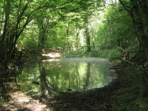 09Lago rio delle Stanghe